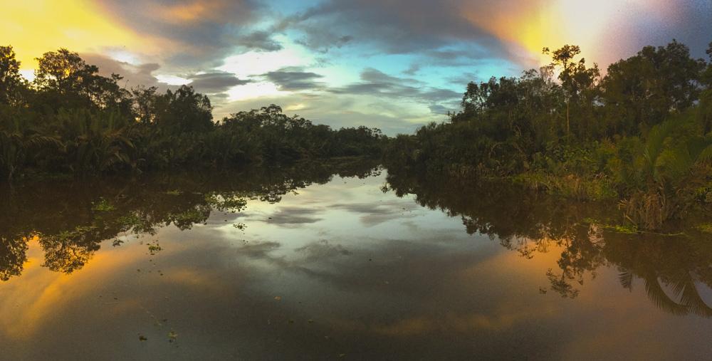 Tanjung Puting sunset