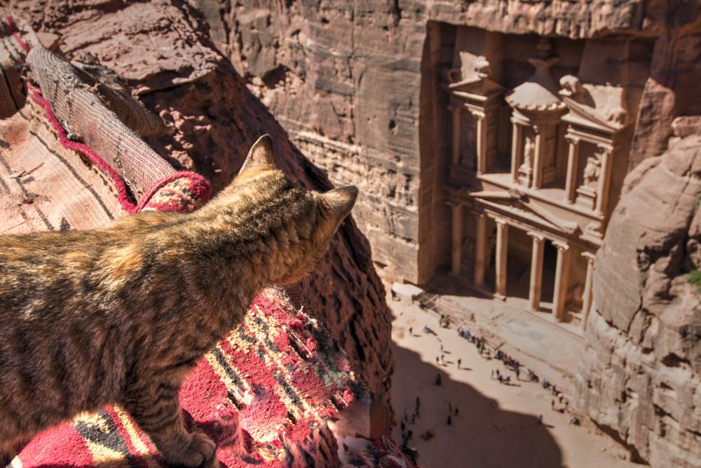 Petra photography advice treasury sunhine