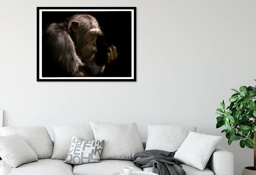 Chimpanzee artwork print
