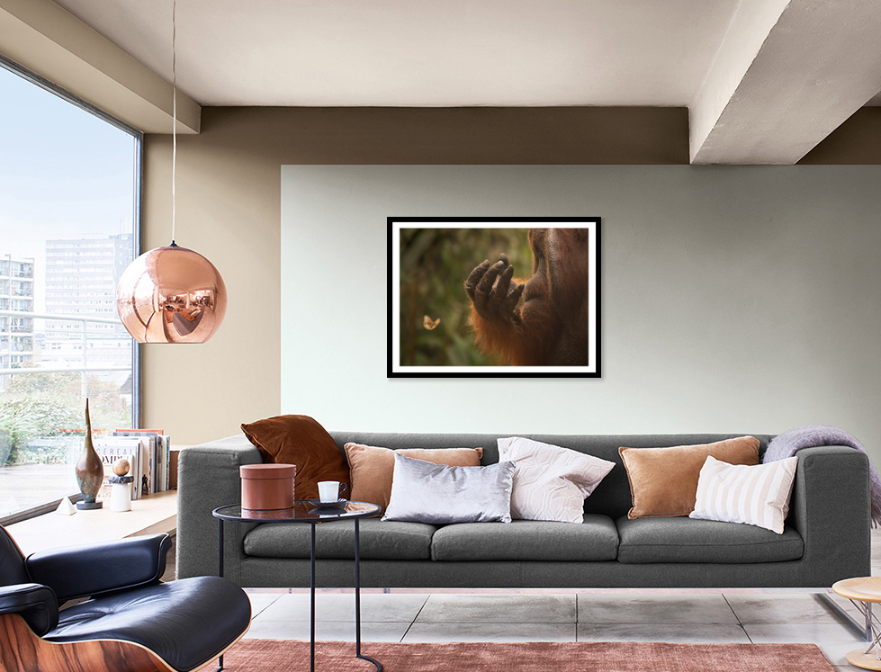 orangutan artwork