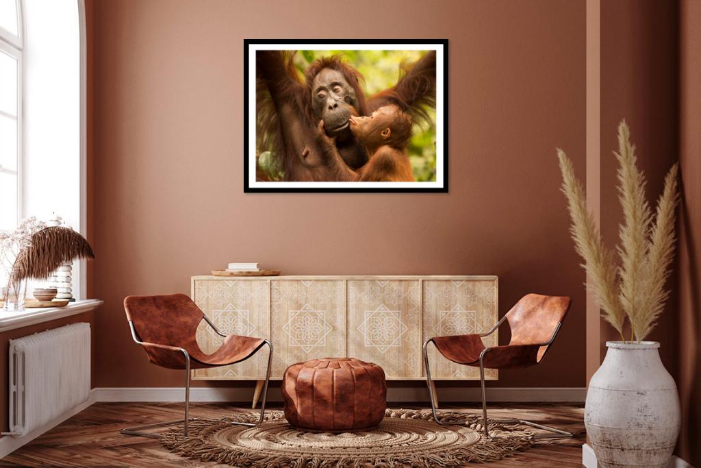 orangutan print artwork
