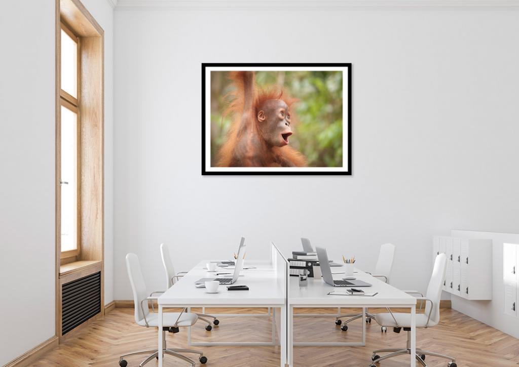 baby orangutan art