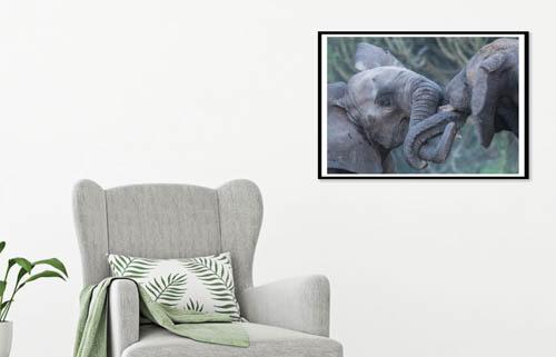 elephant artwork in room