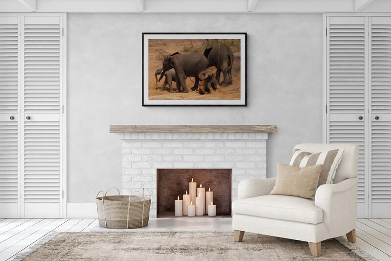 elephant-print-limied-edition